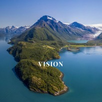 Screenshot_2021-02-04 VISION